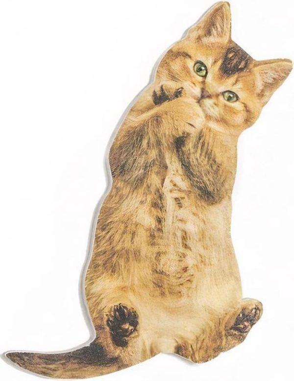 Suck Uk Nagelvijl Kattenvorm 12,5 X 5,5 Cm Bruin